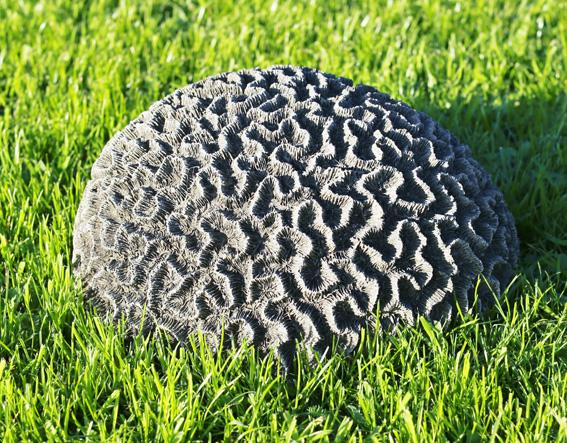 brain coral stone garden ornament