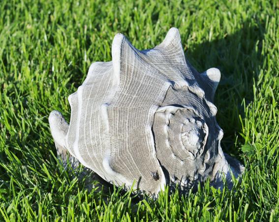 stoneware conche shell